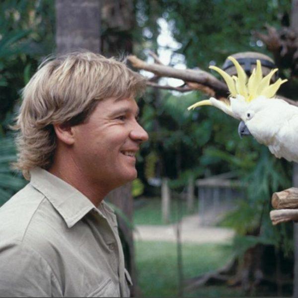 Bindi Irwin's heartfelt birthday tribute for dad Steve Irwin